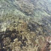 Op de zeebodem stoten